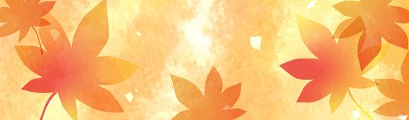 季節菓子【秋】